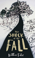 the-shock-of-the-fall