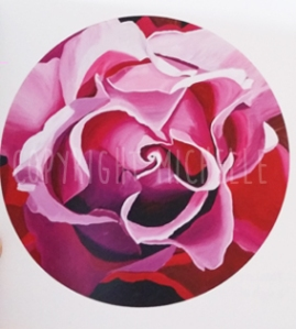 roses-pink